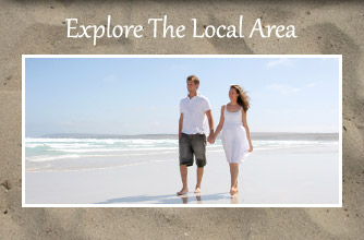 Explore The Local Area